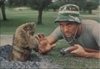 Be the gopher. Know the gopher. Love the gopher.